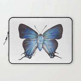 Butterfly - The Great Purple Hairstreak - ATLIDES HALESUS by Magda Opoka Laptop Sleeve