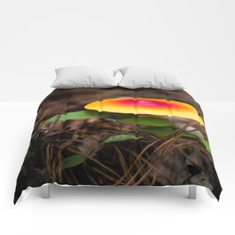Red And Yellow Mushroom Comforters