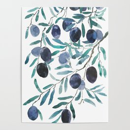 black olive watercolor 2018 Poster