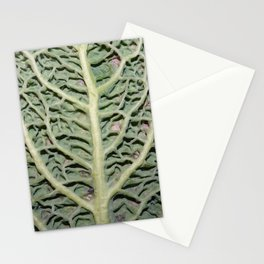 Cabbage Experiment Stationery Cards