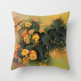 the beauty of a summerday -11- Throw Pillow