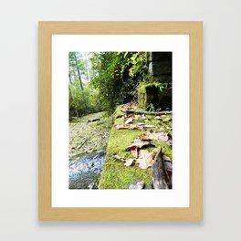 Camelot Framed Art Print