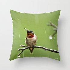 Hummingbird XIII Throw Pillow