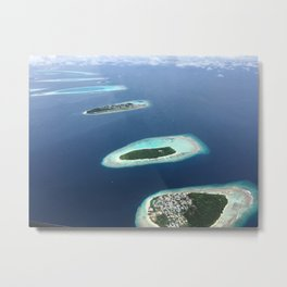 Bird View Metal Print