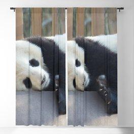 Sweet dreams Blackout Curtain