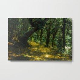 Boboli Road Metal Print