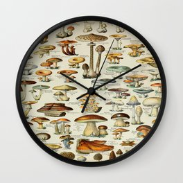 Mushrooms Vintage Scientific Illustration French Language Encyclopedia Lithographs Educational Wall Clock