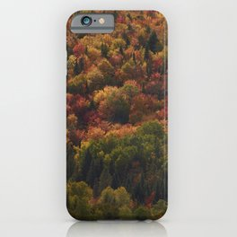 Colours in Saint Élie de Caxton - Mauricie - Canada iPhone Case