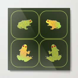 Four frogs Metal Print