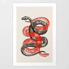 Twin Snakes Art Print