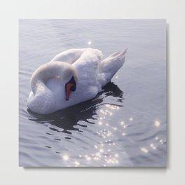 sleeping beauty (swan lake) Metal Print