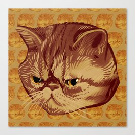 Fitzroy the Cat Canvas Print