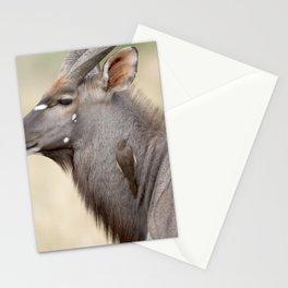 Nyala with Oxpecker Stationery Cards