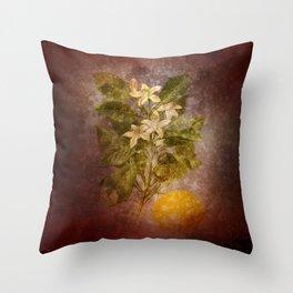 Vintage Fruit Throw Pillow