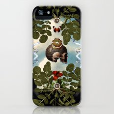 Vanitas Vanitatis iPhone (5, 5s) Slim Case