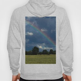 Living in the rainbow land Hoody