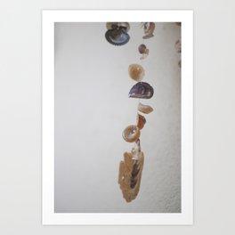 Hanging Sea Shells Art Print