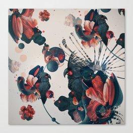 ash kokoodoo Canvas Print