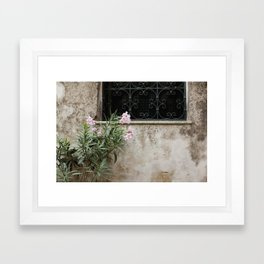 Pink Oleander in Sicily Framed Art Print