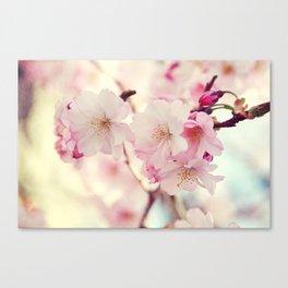 cotton candy flowers Canvas Print