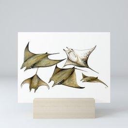 Chilean devil manta ray (Mobula tarapacana) Mini Art Print