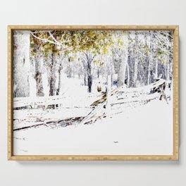 Winter Fence Line | Landscape | Nadia Bonello | Canada Serving Tray