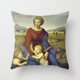 Madonna of the Meadows by Raphael Throw Pillow