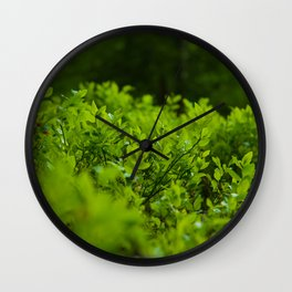 Silk of nature Wall Clock