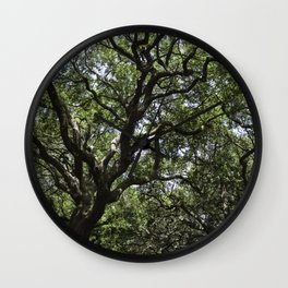 White Point Gardens Wall Clock