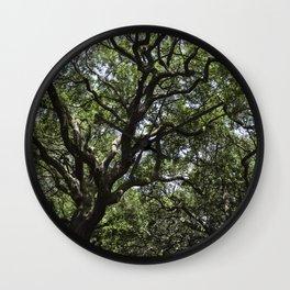 White Point Gardens Wall Clock