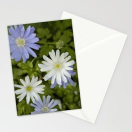 Purple and White Flowers Stationery Cards