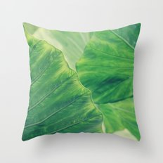 Defining Edges 2 Throw Pillow