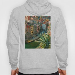 Italy. Cinque Terre - Canal side Close Up Hoody