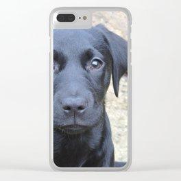 Labrador puppy Clear iPhone Case
