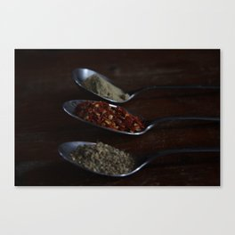 Spicing thing up Canvas Print
