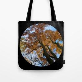 Tree from below Tote Bag