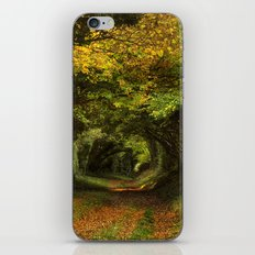Leaf Your Troubles Behind iPhone & iPod Skin
