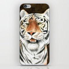 Silent Stalker - Tiger iPhone & iPod Skin