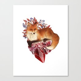 Red Fox and Ruby Canvas Print