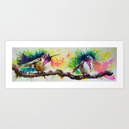 Costa's Hummingbirds Art Print