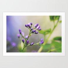 Purple Reign Art Print