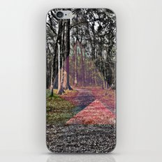 SEASONS iPhone & iPod Skin