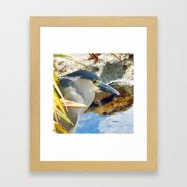 Blue Herron Framed Art Print
