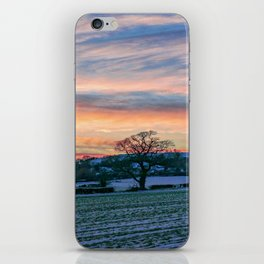 Sunset & Snow iPhone Skin