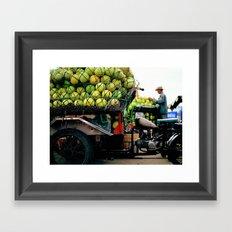 Pomelos Framed Art Print