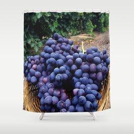 Grape Vineyard Shower Curtain