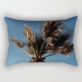 Palmetto in Lacanau-palms,drupe,sabal,swamp,cabbage,abanico,drupa,palmera Rectangular Pillow