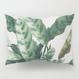 Pattern II Pillow Sham