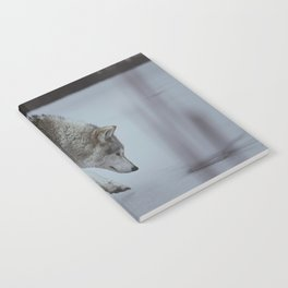Ice Notebook