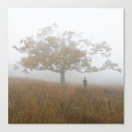 Tree and Figure in Dense Fog, Tanner's Ridge Overlook.  Shenandoah National Park, Virginia. Canvas Print
